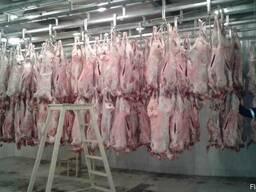 Мясо - фото 3