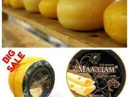 Сыр оптом Твердые сыры оптом LLC Mitlife Украина