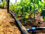 Проектирование и строительство в сельском хозяйстве - photo 3