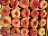 Саженци плодовых культур - photo 1